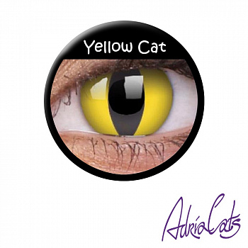 Жёлтые линзы «Yellow Cat»